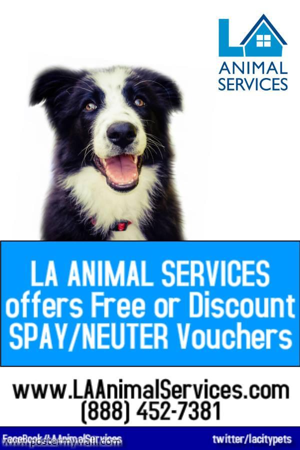LA Animal Services spay and neuter vouchers
